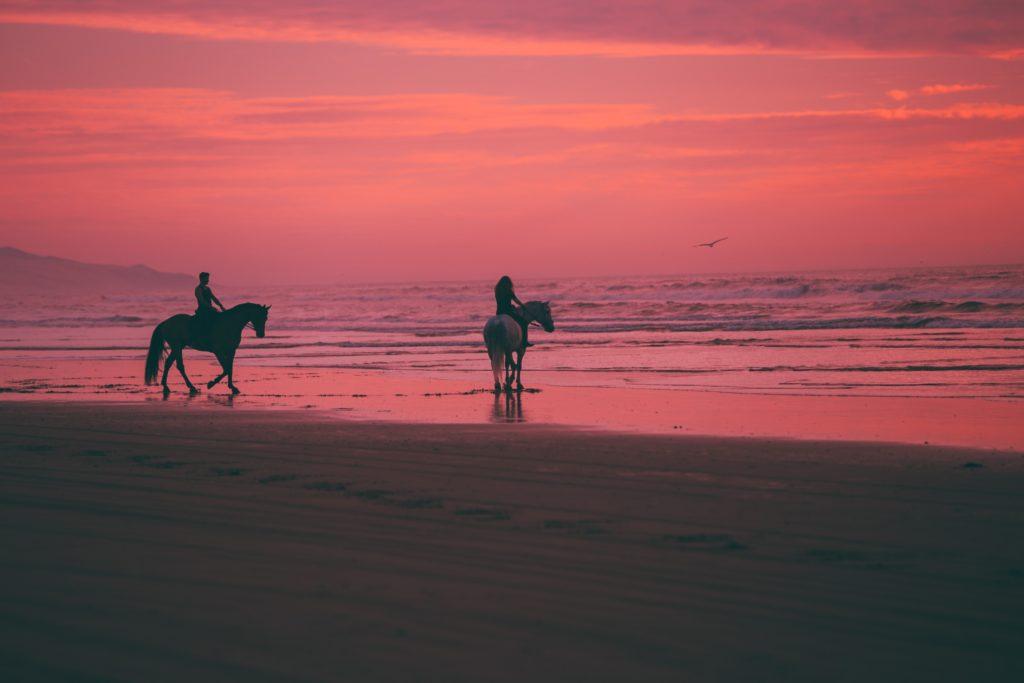 equitazione preferita